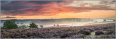 Panorama perfect sunrise heath