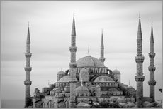 the blue mosque in Istanbul / Turkey