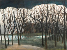 Pond Surrounded by Trees, Winter