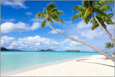 White beach with palm trees, Tahiti, French Polynesia