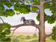 Whippet on the tree