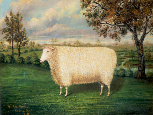 Poster A Prize Sheep of the Old Lincoln Breed, 1835