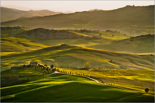 Andreas Wonisch - Evening light in Tuscany