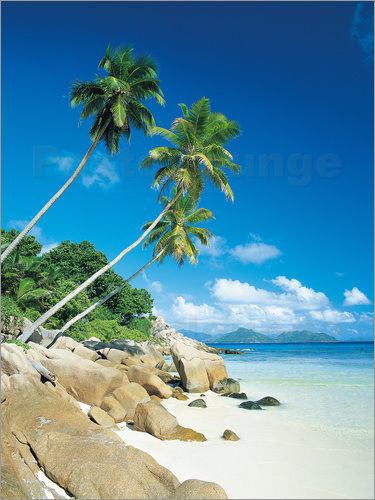 Lee Frost - Anse Severe With Praslin Island in Background, La Digue, Seychelles