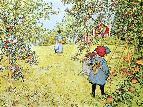 Carl Larsson - The Apple Harvest
