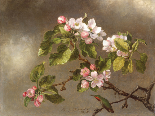 Martin Johnson Heade - Apple Blossoms and a Hummingbird, 1875