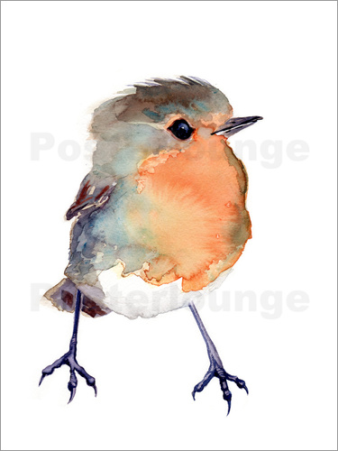 Poster Baby Robin Watercolour