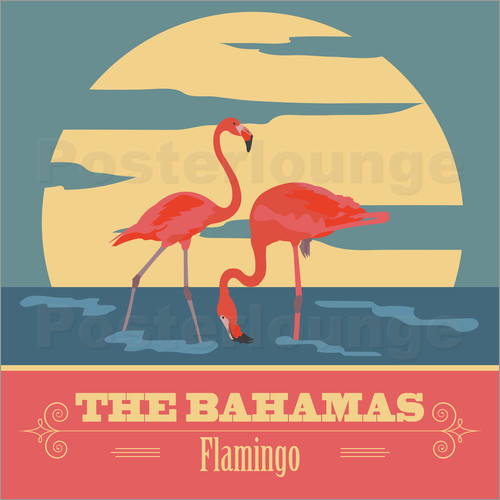 Poster The Bahamas - Flamingo