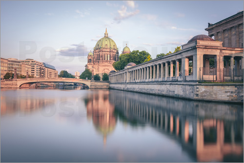 Poster Berliner Dom in the evening light
