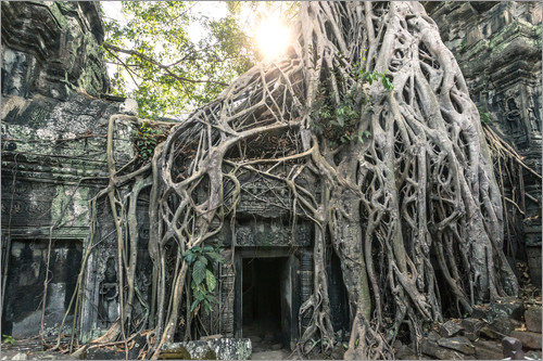 Matteo Colombo - Famous Tomb Raider temple, Angkor, Cambodia