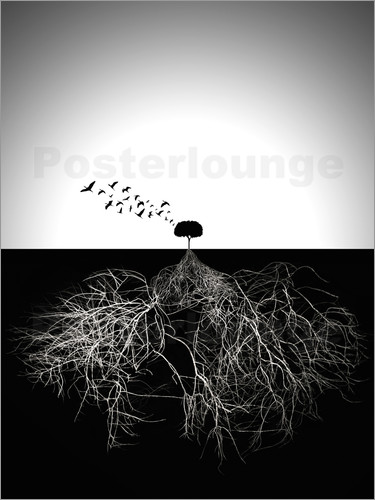 posters affiches de les apparences sont trompeuses posterlounge. Black Bedroom Furniture Sets. Home Design Ideas