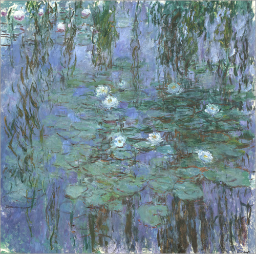 Poster Blue Water Lilies