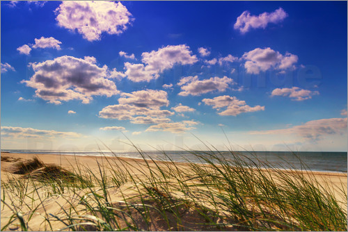 Beate Margraf - Blue sky with clouds on Texel