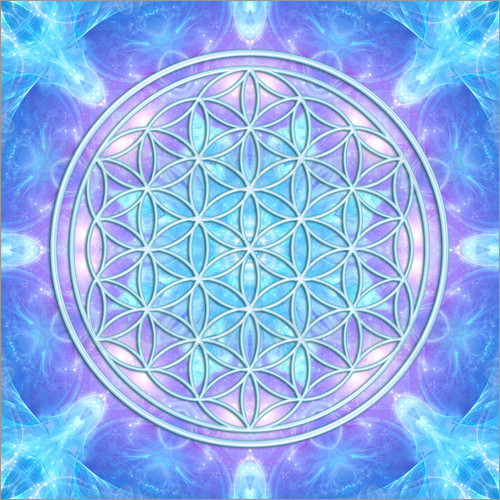 Poster Flower of Life  - Dolphin Awareness