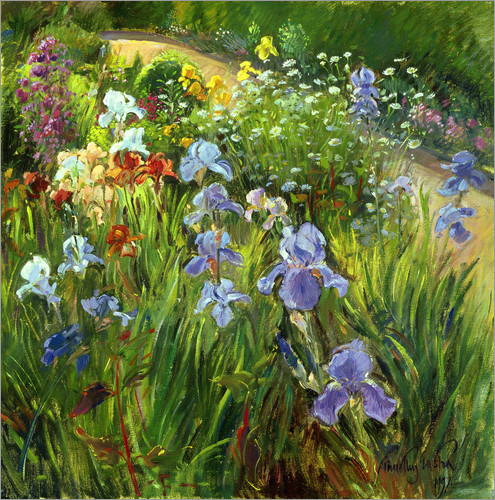 Timothy Easton - Flower bed