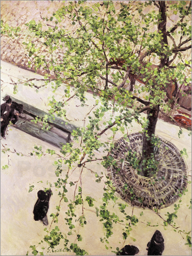 Gustave Caillebotte - The Boulevard Viewed from Above