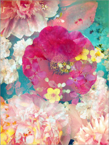 Alaya Gadeh - Composing with colorful flowers in water