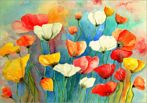 Poster Colorful poppy, poppy flowers painting