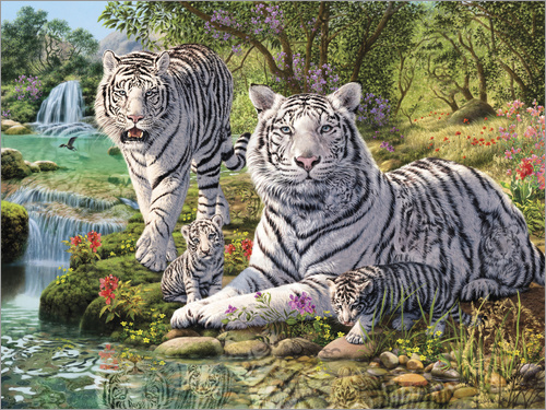 Poster White Tiger Clan