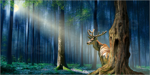 Monika Jüngling - The Deer In The Mystical Forest