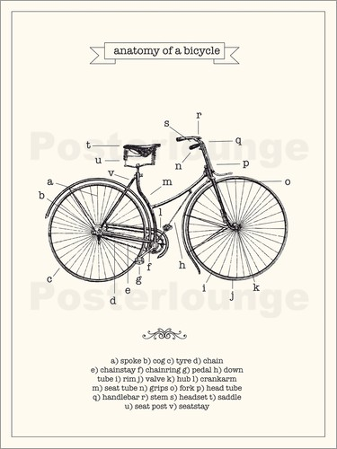 Poster Vintage parts of a Bicycle anatomy