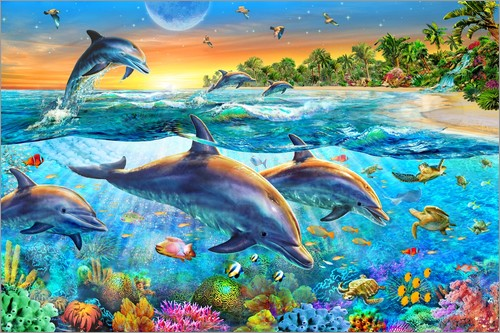 Poster Dolphin bay