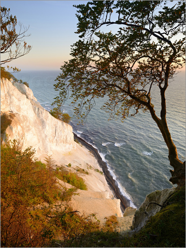 Andreas Vitting - The Cretaceous rocks of Møns Klint
