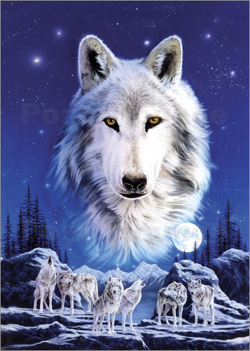 Poster Night of the wolves