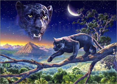 Adrian Chesterman - Twilight panther