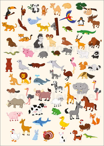 Poster Animal World
