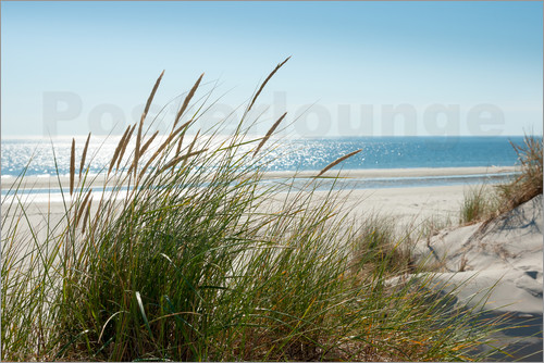 Reiner Würz RWFotoArt - Dune with fine marram grass