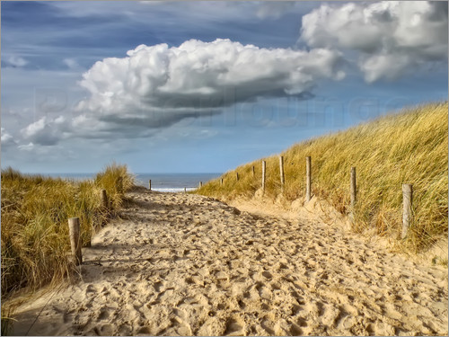 Peter Roder - Through the dunes to the beach