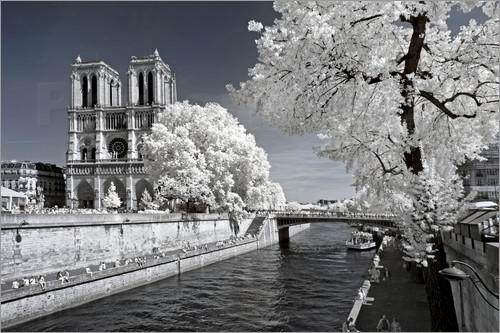 Philippe HUGONNARD - Another Look - Paris Notre Dame