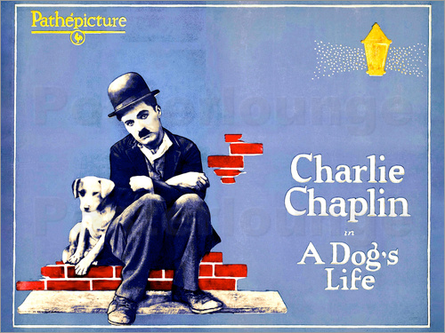 Poster A Dog's Life