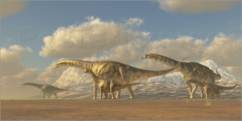 Poster A herd of Argentinosaurus dinosaurs