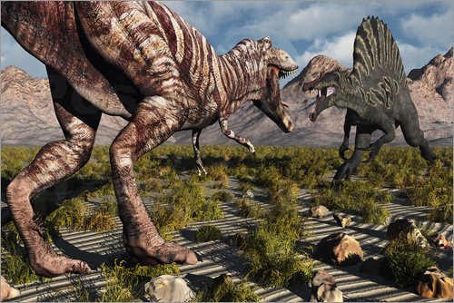Poster A confrontation between a T. Rex and a Spinosaurus dinosaur