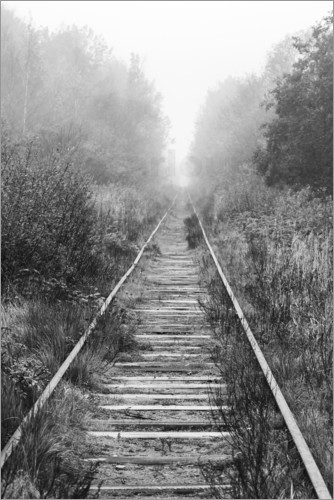 Railroad in foggy forest