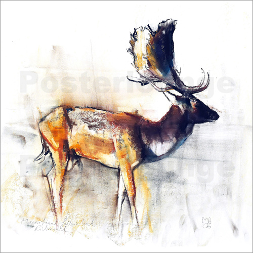 Mark Adlington - Moose