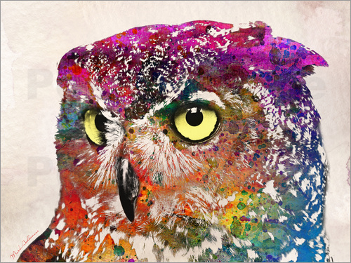 Poster owl drowing
