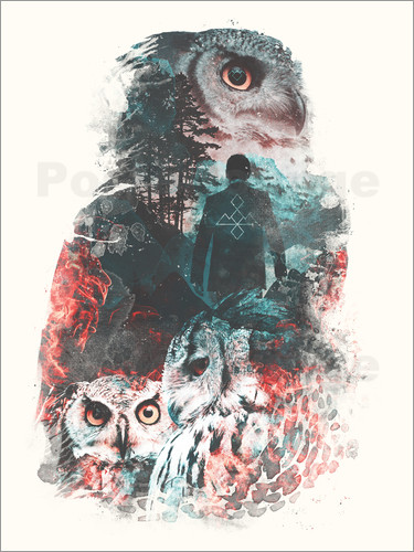 Poster The Owls are Not What They Seem