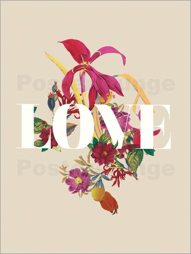 Nory Glory Prints - Exotic Love flowers botanical art