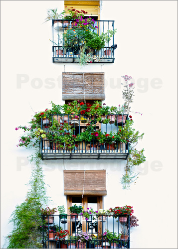Poster Facade with balconies full of flowers in Valencia