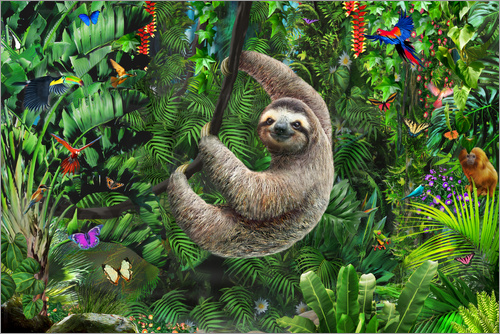 Adrian Chesterman Sloth In The Jungle Poster Posterlounge