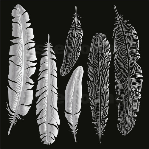 Feathers in silver