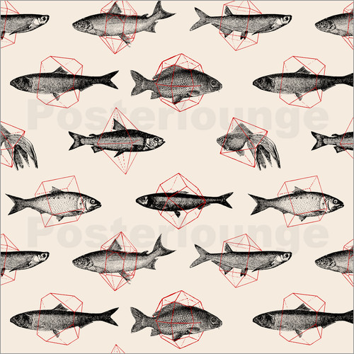 Florent Bodart - Fishes In Geometrics