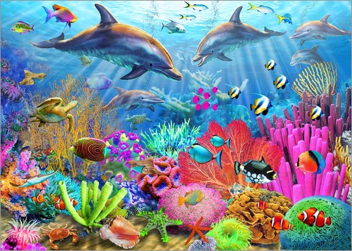 Poster Dolphin Coral Reef