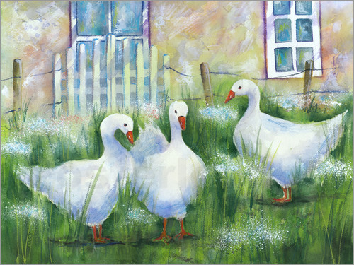 Jitka Krause - Geese in the grass