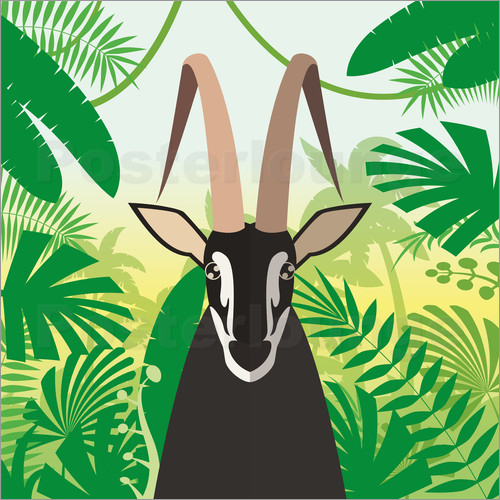 Poster Gazelle in the rainforest