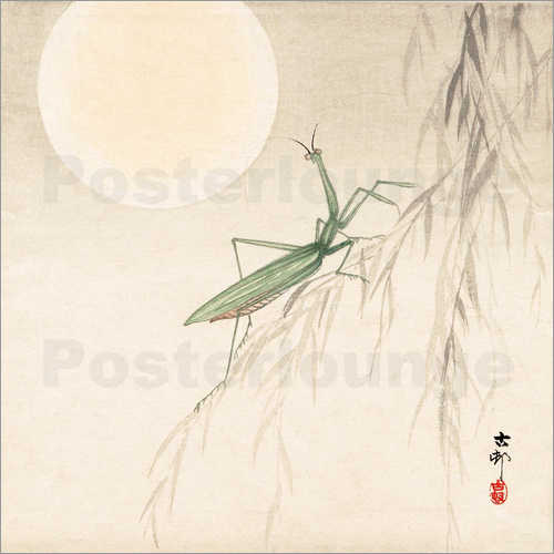 Ohara Koson - praying mantis on willow branch, a full moon above
