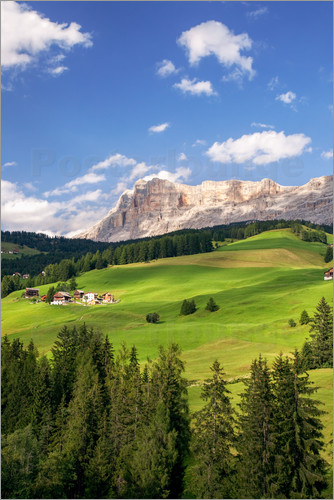 Poster Green valley in South Tyrol